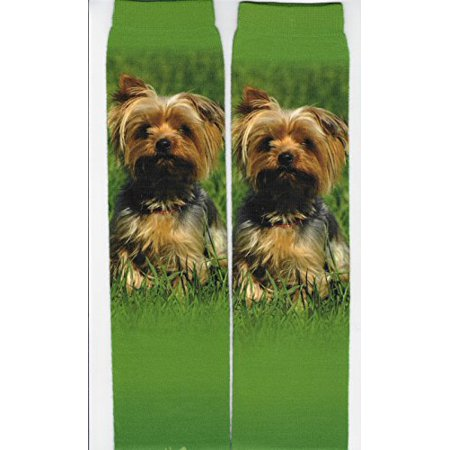 Yorkshire Terrier Sublimated Socks - One Size